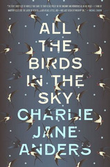 all the birds in the sky 001